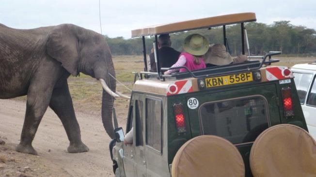 Kenya Oct 2011 460