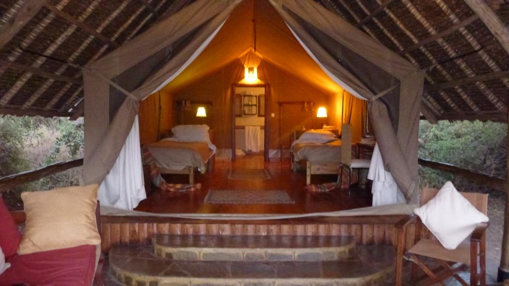 Tortilis Tent 4